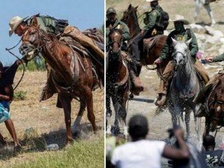ee uu suspende uso caballos frontera 1 1