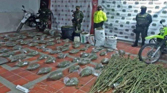 En Sonsón cultivaban tomate como fachada para marihuana