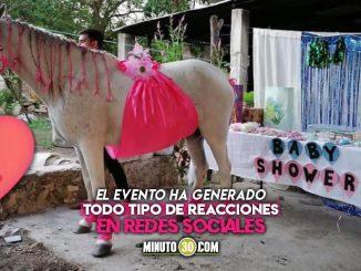 yegua Camila