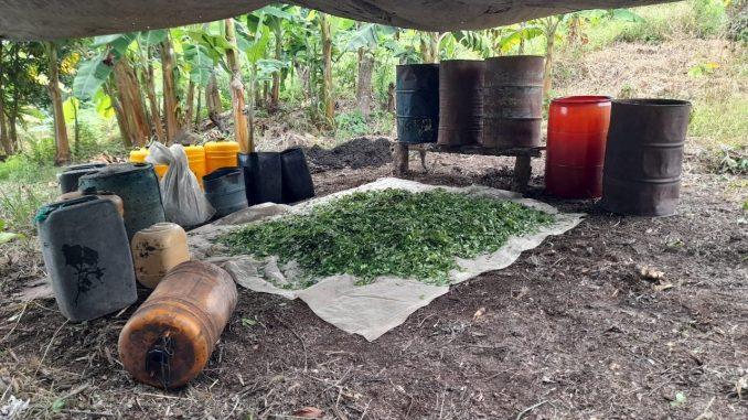 Destruyeron laboratorio de coca que pertenecería al ELN