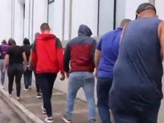 Cayeron 'Los Machados', señalados de producir y vender coca