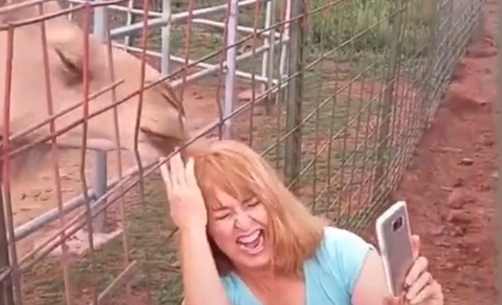 mujer camello foto